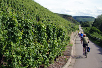Moselle cycling holidays