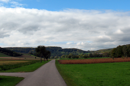 Tauber Valley cycle path